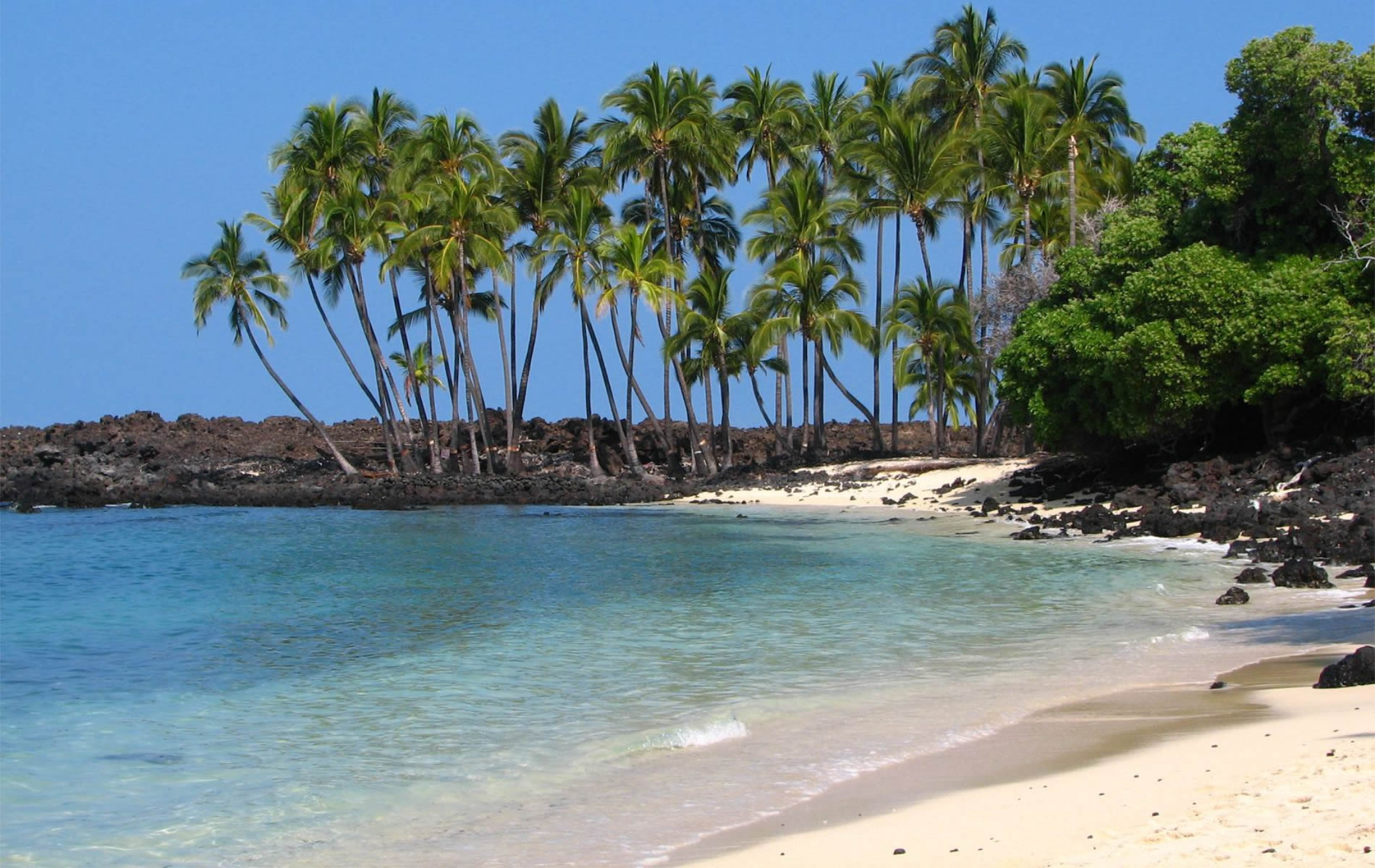 hawaii the paradise island 15 days of paradise our 15-day hawaiian island cruises offer an intoxicating mix of island adventure and carefree cruising you'll venture to four dazzling islands.