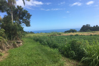 Hamakua Acreage with Mountain & Ocean Views!